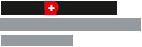 Stapp + Partner Logo